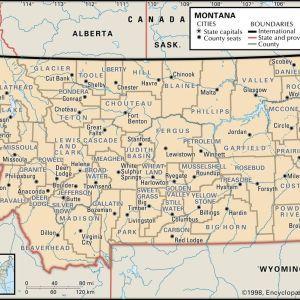 Tigerfloc - Montana